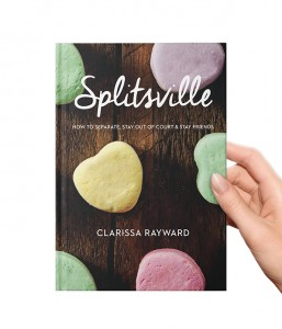 SPLITSVILLE THE BOOK